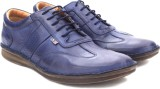Arrow Corporate casuals (Navy)