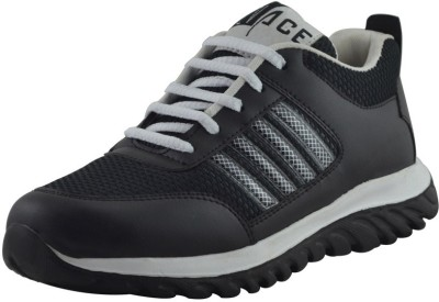 Elvace 8020 Cricket Shoes