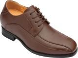 Dvano Shoes DFM109-2D Lace Up (Brown)