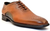 Zoot24 Lace Up (Tan)