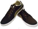 Evok Canvas Shoes (Brown)