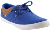 Mobiroy Canvas Shoes (Blue, Brown)