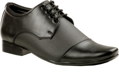 Zebra California Lace Up Shoes