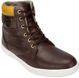 Taboo Casuals (Brown)