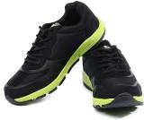 Sparx Sneakers (Black, Green)