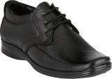 LeatherKraft Lace Up Shoes (Black)