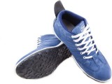 Royal Collection Casuals (Blue)