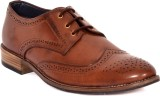 Limerence Brogue Party Wear (Tan)