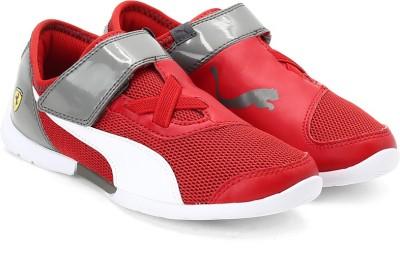 Puma Future Cat SuperLT SF EVO V Ki Sneakers