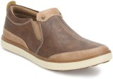 BCK Tista Casual Shoes (Camel)