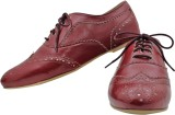 Rhythm & Shoes Alexa Maroon Casuals