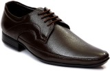 George Adam Lace Up Shoes (Brown)