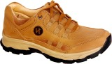 Haven Nih Outdoor Shoes (Brown)