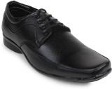 Golfer Lace Up Shoes (Black)