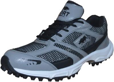 Port Corvin Cricket Shoes(Grey)