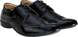 Beonza Designer Brogue Lace Up (Black)