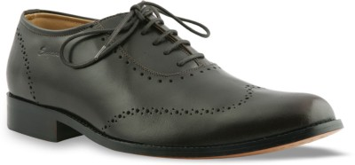 Engross Brogue Lace Up