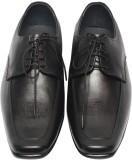 C Comfort Lace Up Shoes (Black)
