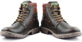 APF Hill Man Boots (Brown)