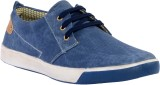 Evlon Canvas Shoes (Blue)