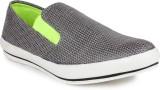 Jynx Casual shoe (Grey)