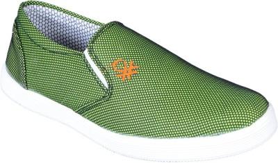DIZARO Canvas Shoes