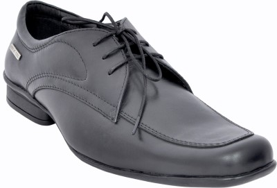 Maplewood Oxford Lace Up