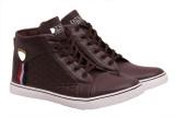 Fashbeat Sneakers (Maroon)