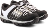 Golden Sparrow Running Shoes (Black, Whi...