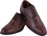 eeZeeLife TPR Corporate Casuals (Brown)