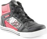 DK Derby Kohinoor Red Sneakers (Red)