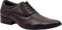 Portland Lace Up Shoes(Brown)