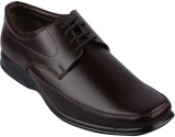 Twin Lace Up Shoes (Brown)