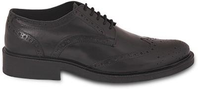 Shoeatsight Lace Up Shoes