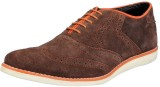 FAUSTO Lace Up (Brown)