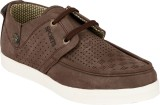 HNT Casuals (Brown)