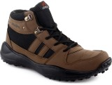 Welcome Brown Casual Shoes (Brown)