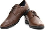 Louis Philippe Lace Up Shoes (Brown)