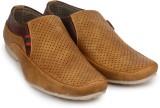 Shoetopia Loafers (Tan)