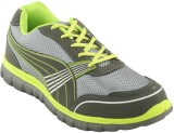 Oasis 602 Running Shoes