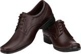 CK Shoes Lace Up Shoes (Brown)