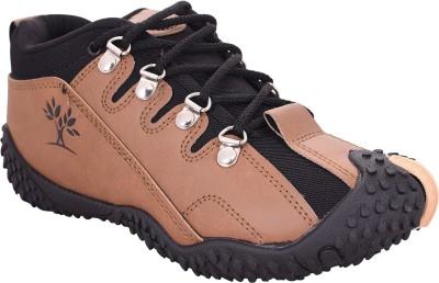 Rockfield Casuals, Sneakers