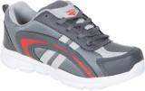 Lee Parke Training & Gym Shoes (Grey)