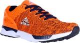 Adibon Sports shoe (Orange)