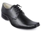 Windus Black Lace Up Shoes (Black)