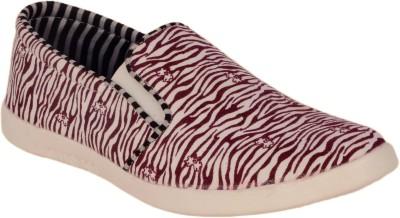 Scarpess Canvas Shoes