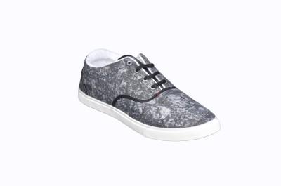 Mr. Polo Canvas Shoes