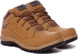 Shoe Island Outdoors (Brown)