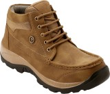Imcolus Boots (Brown)