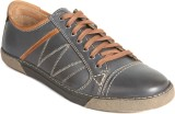 Vito Rossi SM Casual Shoes (Blue)